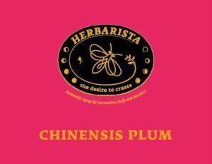 chinesis plum